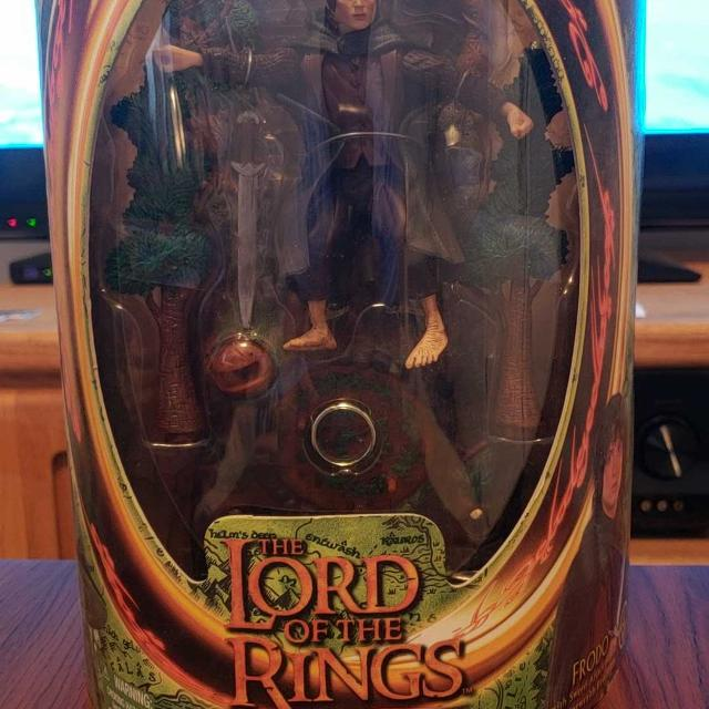 The Lord Of The Rings (The Fellowship Of The Ring)