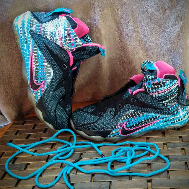 d1eb6eaa817c Best Nike Lebron 12  23 Chromosomes  Youth Sz5 for sale in Piatt County