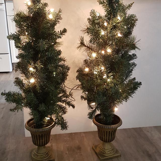 Pair Of Potted Lighted Christmas Trees