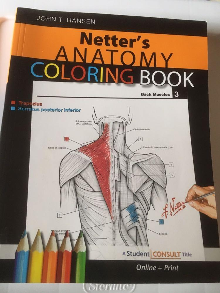 Netter S Anatomy Coloring Book 28 Value