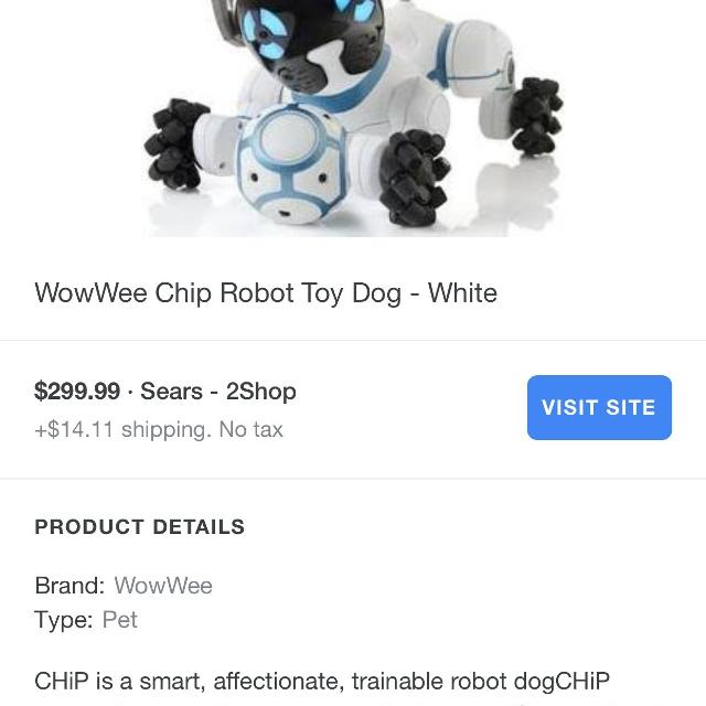 Chip the Robot Dog