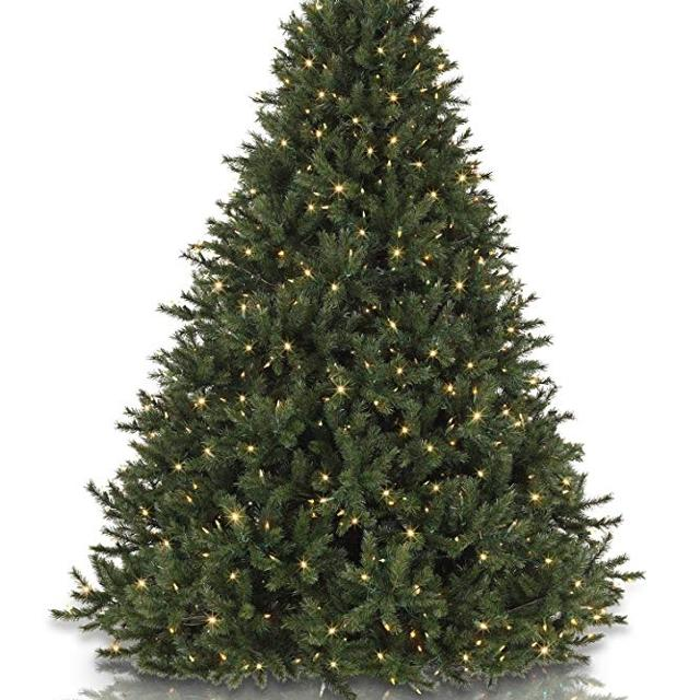 Columbia Christmas Tree: Best Rocky Mountain Pine Christmas Tree Artificial For