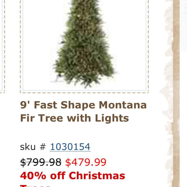 9ft Montana Fir Christmas tree. - Best 9ft Montana Fir Christmas Tree. For Sale In Karns, Tennessee