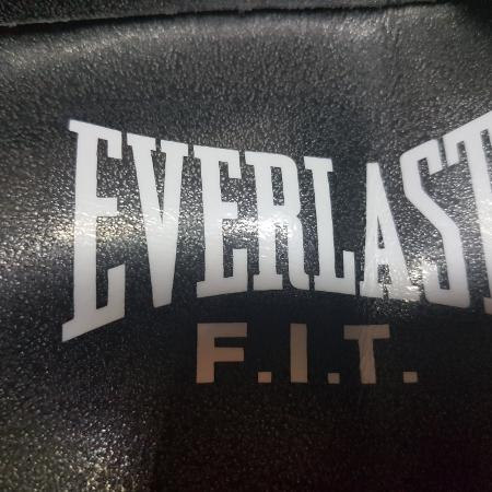 GUC Everlast fit stability ball's, used for sale  Canada