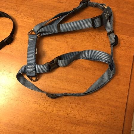 Zeus Dog harness - large for sale  Canada