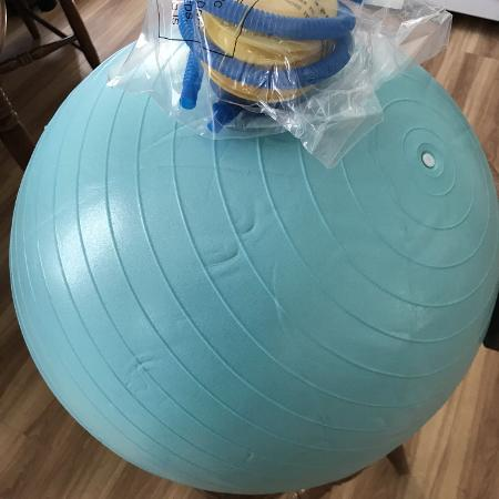 Yoga Ball Pump
