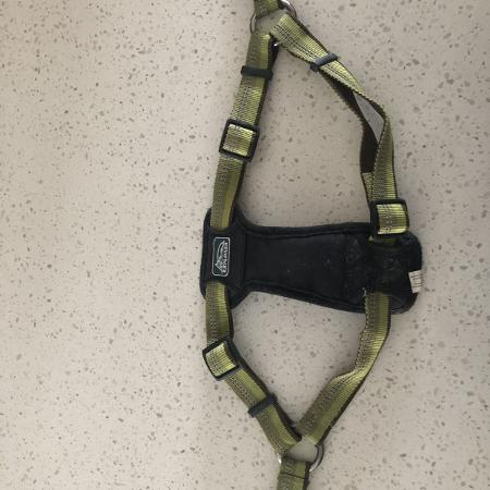 """Dog Harness 20-30""""-excellent condition for sale  Canada"""