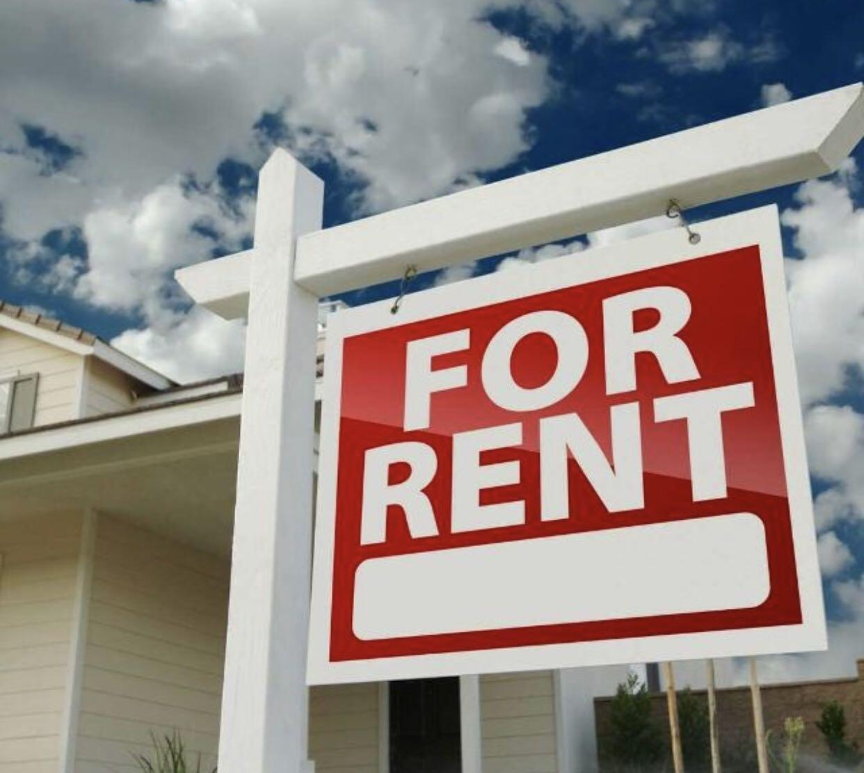 Looking Apartment For Rent: Looking For: ISO Apartment For Rent In Keswick, Ontario