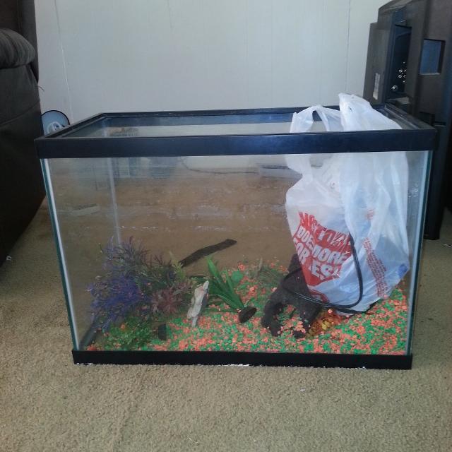 Best 20 gallon fish tank for sale for Fish tank 20 gallon