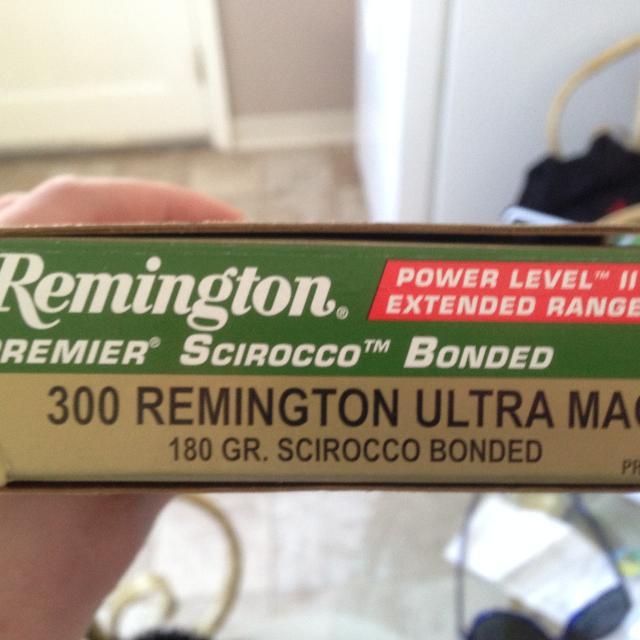 300 Remington Ultra Mag Bullets