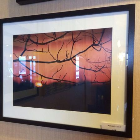 Local artist photograph in frame. Sun..., used for sale  Canada