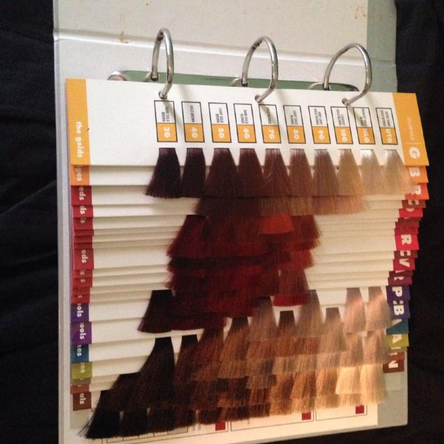 paul mitchell color swatch book reduced from 6000 to 4500 - Color Swatch Book