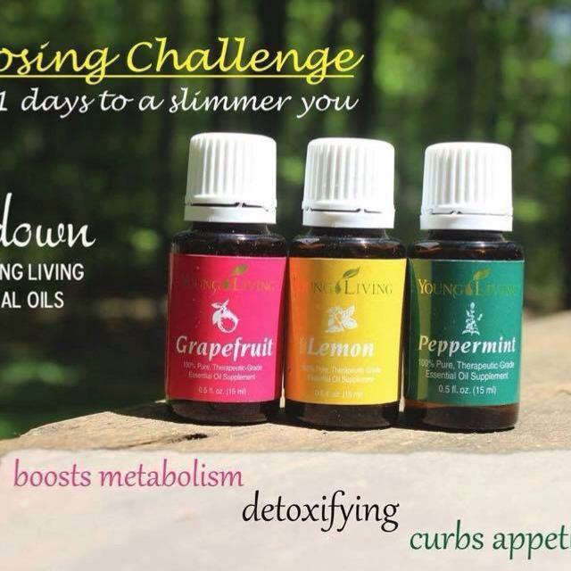 Weight Loss Trio Oils Free Young Living Grapefruit Essential Oil When You Purchase A Kit From Me