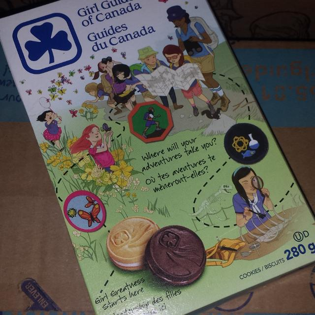 mini girl guide chocolate biscuits