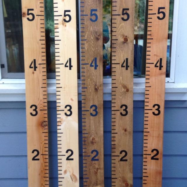 Best Wooden Ruler Growth Charts For Sale In Nanaimo British