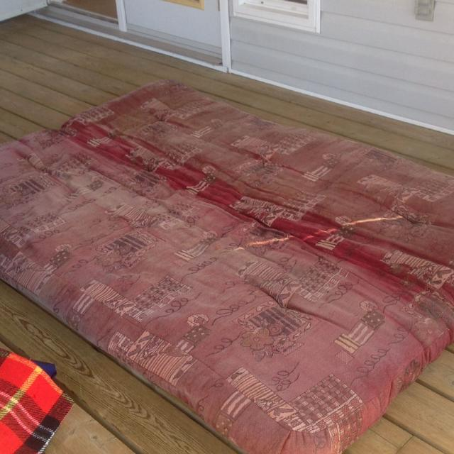 Double Futon Mattress Used On Screened Porch So The Fabric Has Been Bleached By