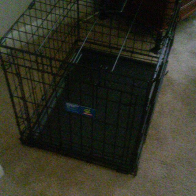 Find More Reduced Again For Quick Sale Top Paw Double Door Dog