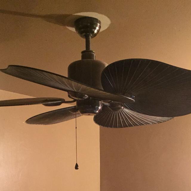 Beautiful Large Ceiling Fan: Best Large Resort Type Ceiling Fan. Huge Elephant Ear