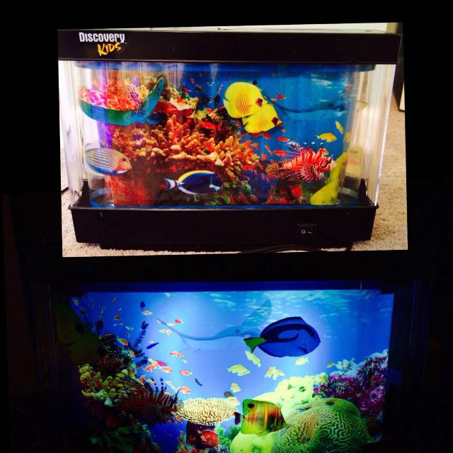 Fake fish aquarium for kids 1000 aquarium ideas for Fish tanks for kids