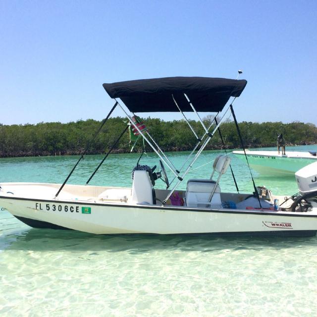 15' Boston Whaler $7,500 obo w 115 hp Johnson Ocean Pro and like new  trailer