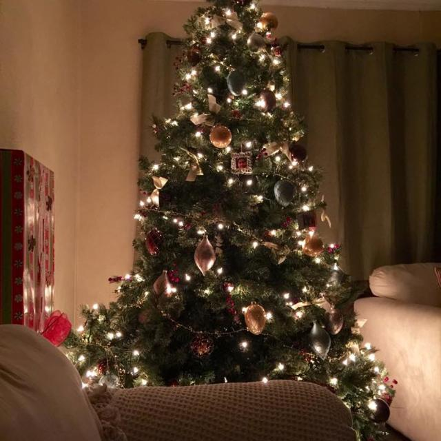 Martha Stewart 7 5 Ft Pre Lit Alexander Fir Tree Retail 200