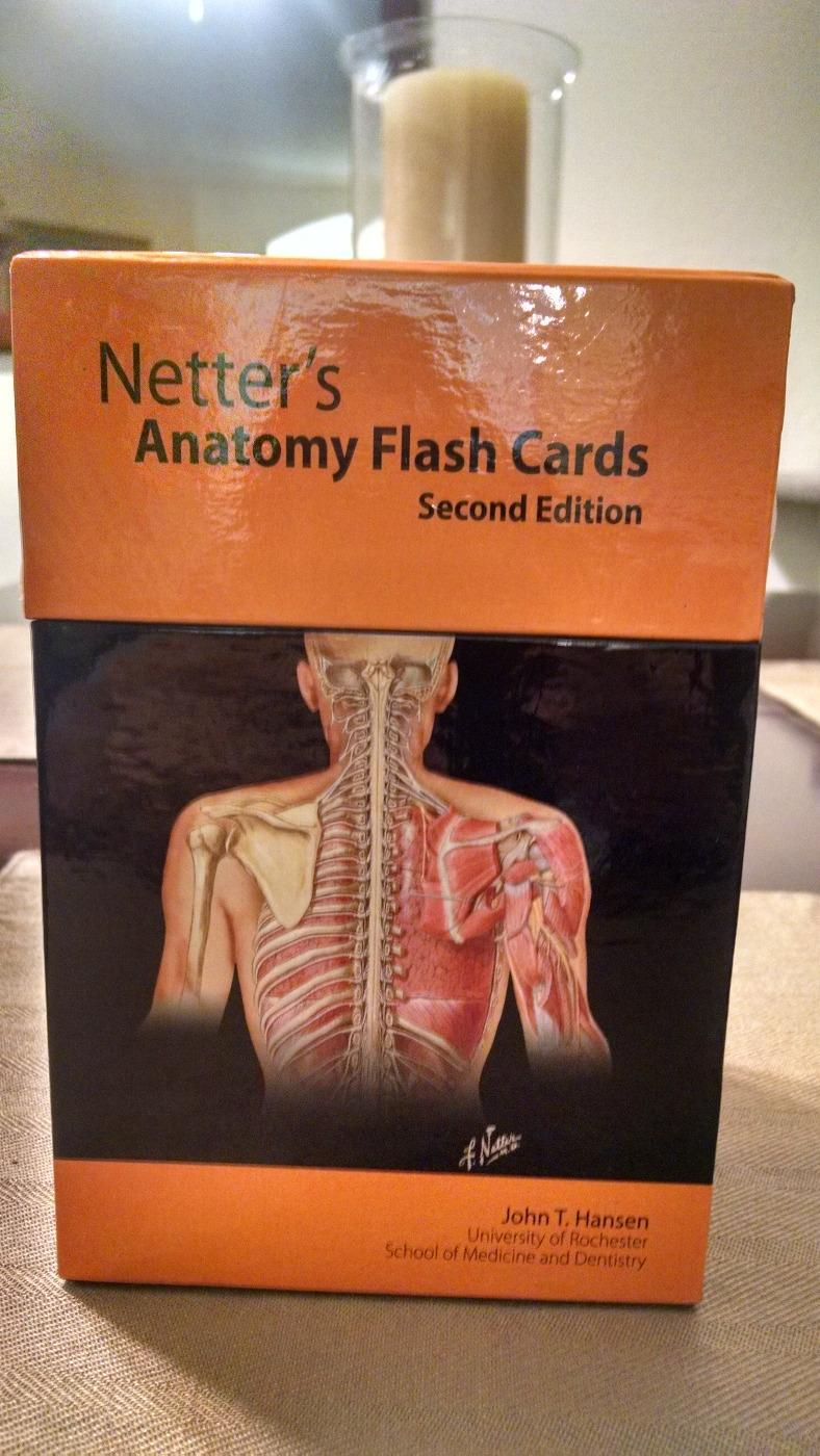 Best Netter\'s Anatomy Flash Cards (second Edition) for sale in ...