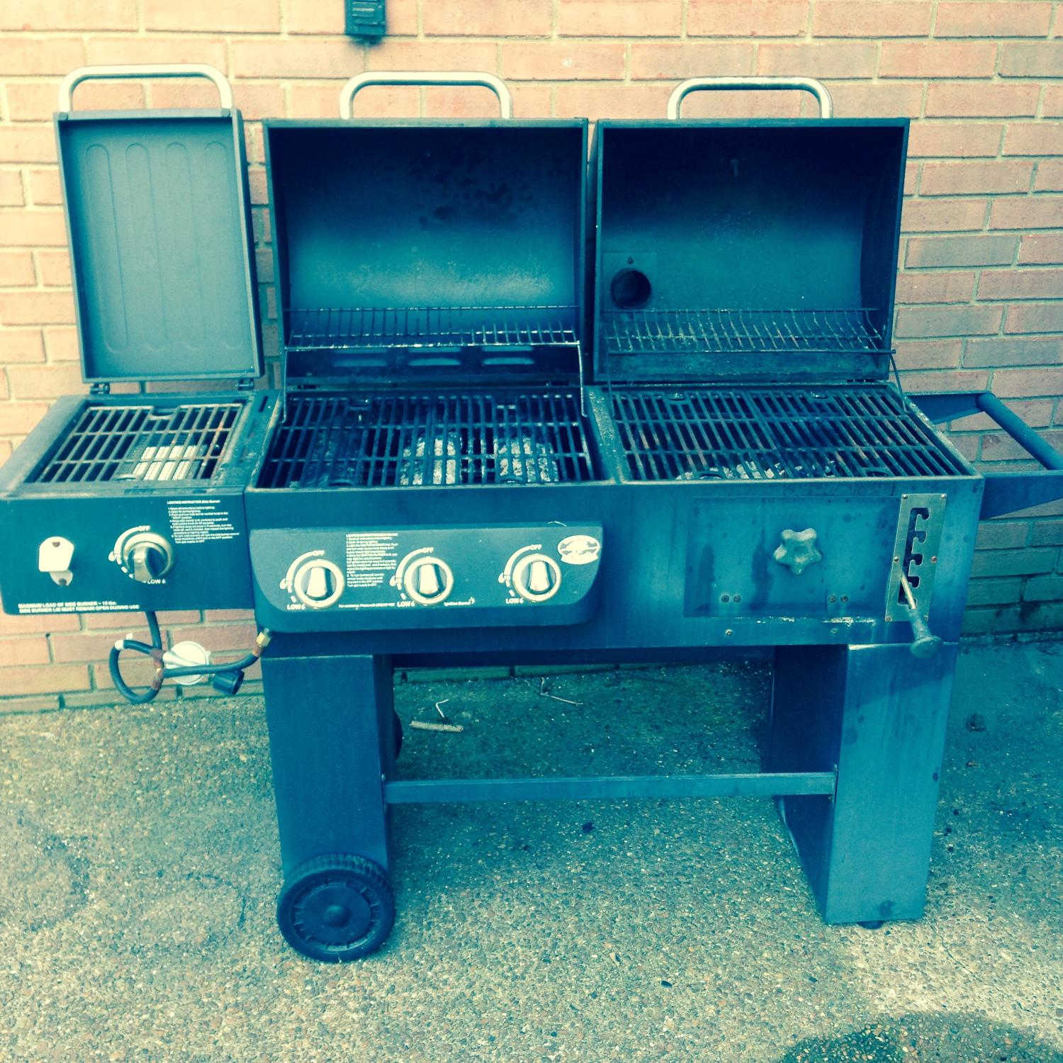 Backyard Classic Professional Grill For Sale - House Backyards