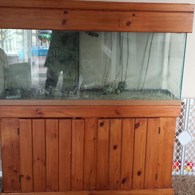 55 Gallon Glass Aquarium With Canopy And Stand Beautiful When Stocked Cleaned