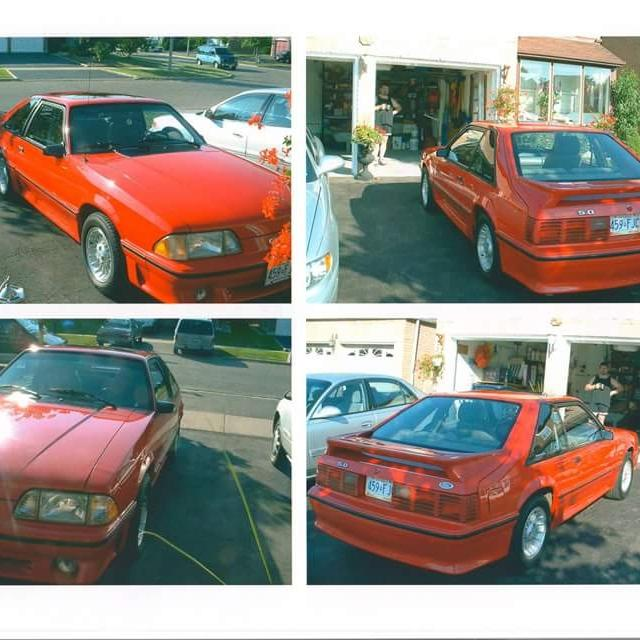 1989 Mustang Gt For Sale Ontario