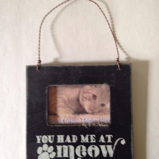 Find More Mini Frame You Had Me At Meow For Sale At Up To 90 Off