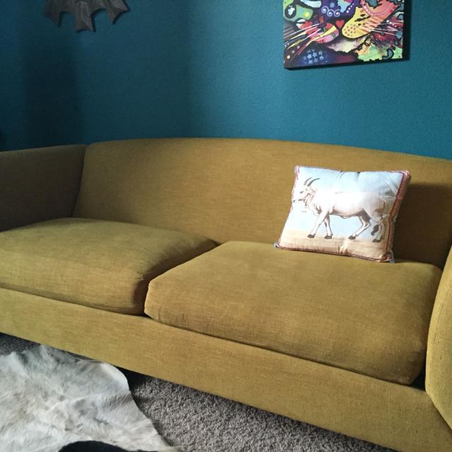 Crate Barrel Silhouette Sofa