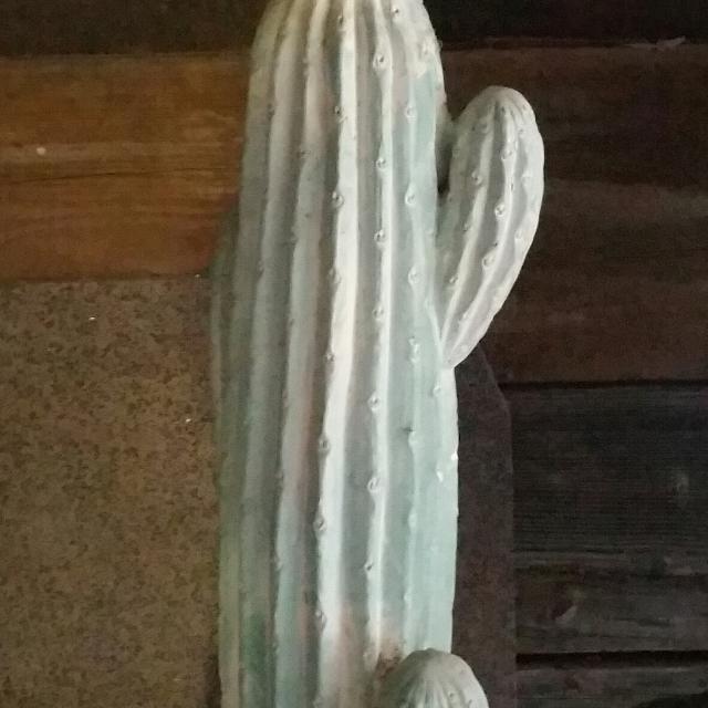 Find more Vintage Saguaro Cactus Floor Lamp 》 》$50.00 《《 Firm ...