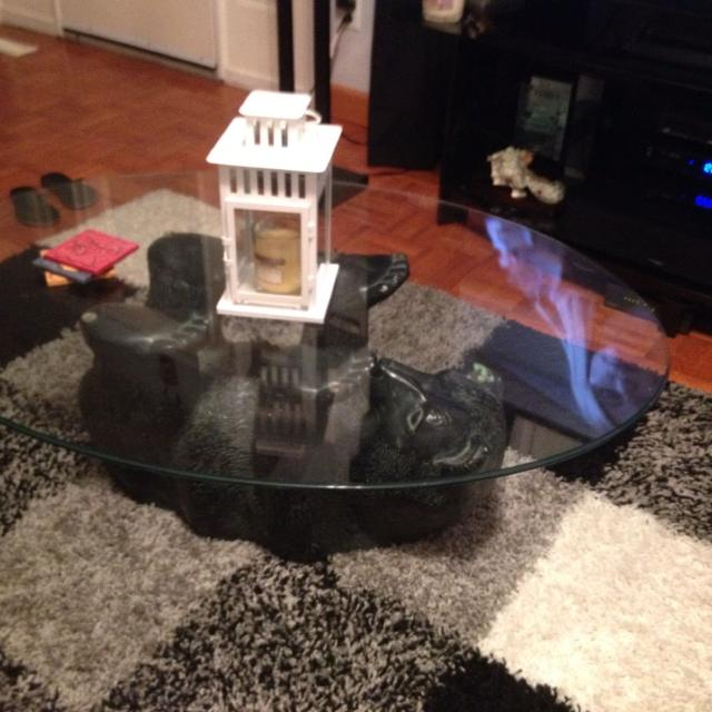Find More Polar Bear Coffee Table For Sale At Up To 90% Off