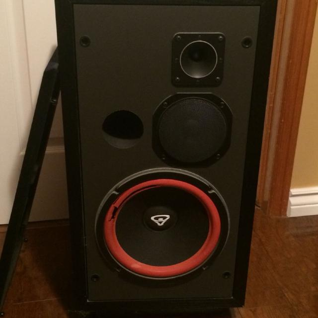 Vintage Cerwin Vega D3 Speakers
