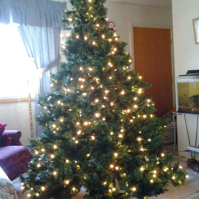Pre Lit Rotating Christmas Tree.7 Ft Pre Lit Rotating Christmas Tree With Bag 55 00 Firm