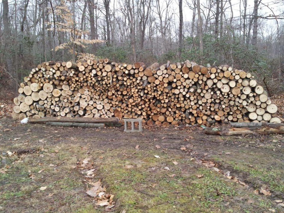 Best Seasoned Oak Firewood For Sale Call Woody For Sale In