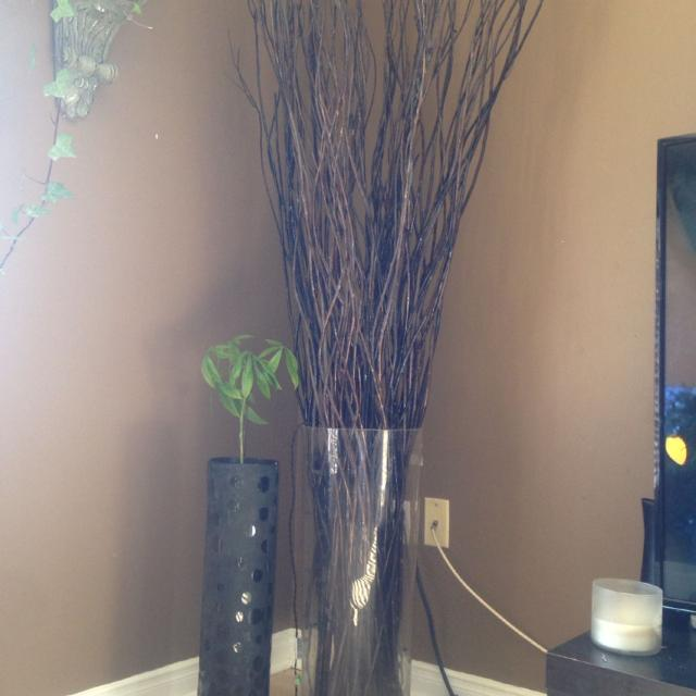 Best Big Glass Vase With Wooden Sticks For Decor Glass Vase Is App 4 5feet Tall For Sale In Cambridge Ontario For 2020