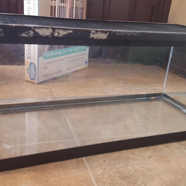 20 gallon tank with screen lid