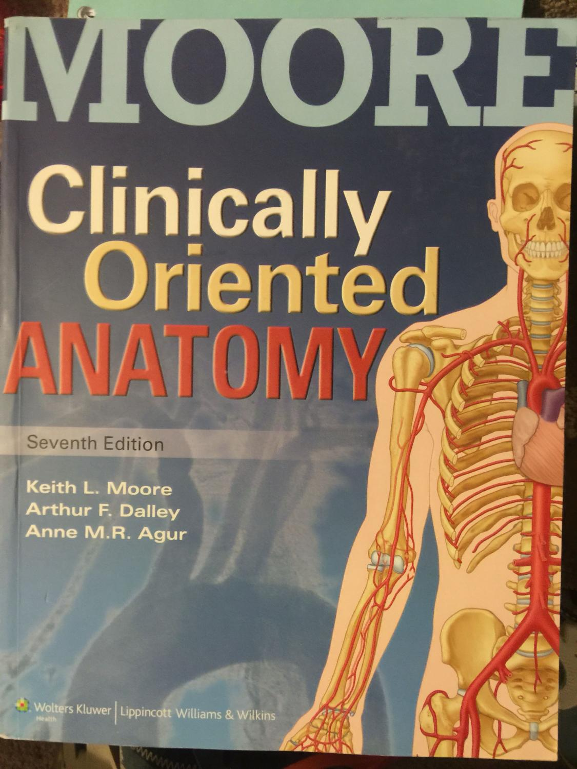 Best Moores Clinically Oriented Anatomy Text-7th Ed for sale in ...