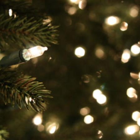 ISO: White Christmas tree lights for sale  Canada