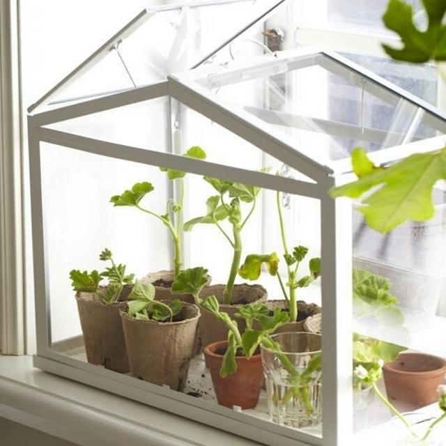 find more ikea socker terrarium greenhouse for sale at up to 90 off. Black Bedroom Furniture Sets. Home Design Ideas