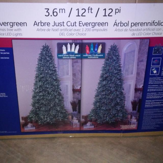 3 Reasons Members Are Addicted - Find More 12 Ft Ge Just Cut Evergreen Tree For Sale At Up To 90% Off