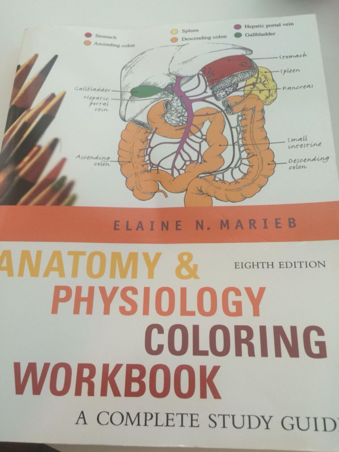 Workbooks » A&p Coloring Workbook - Free Printable Worksheets for ...