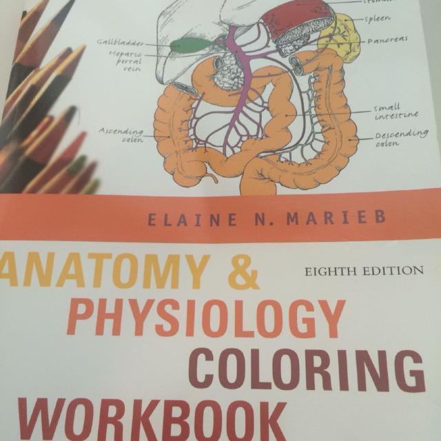 Best A&p Color Workbook for sale in Potranco Road, San Antonio ...