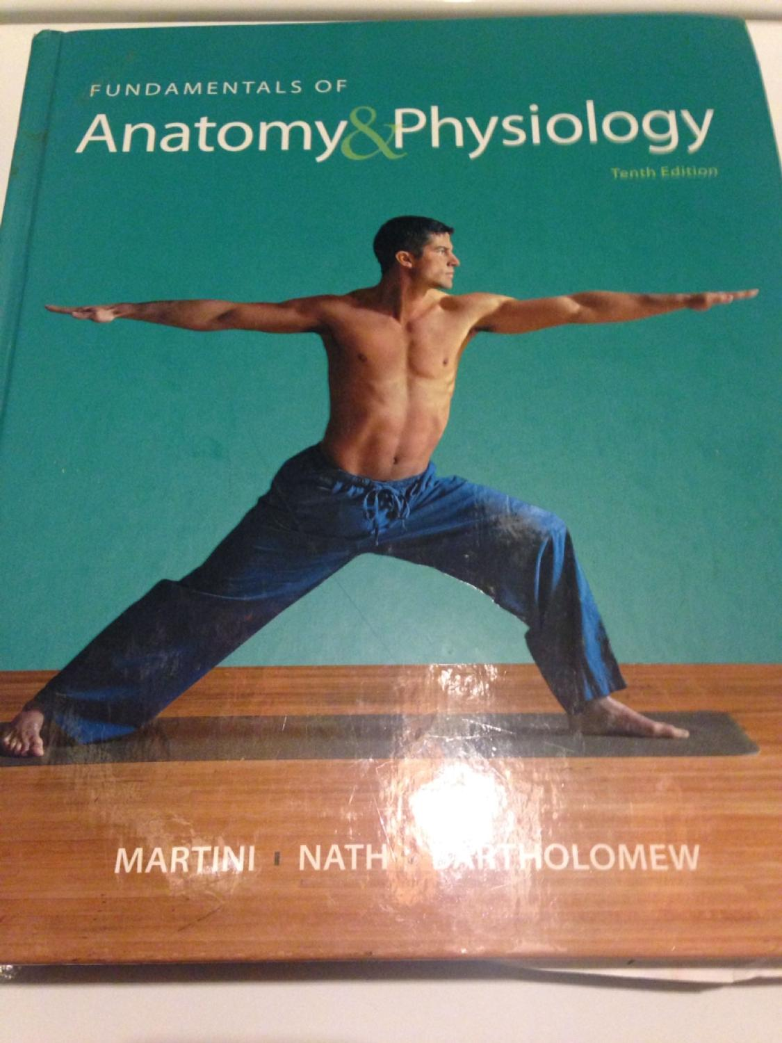 Find more Icc, Bio 205 & 206, Fundamentals Of Anatomy & Physiology ...