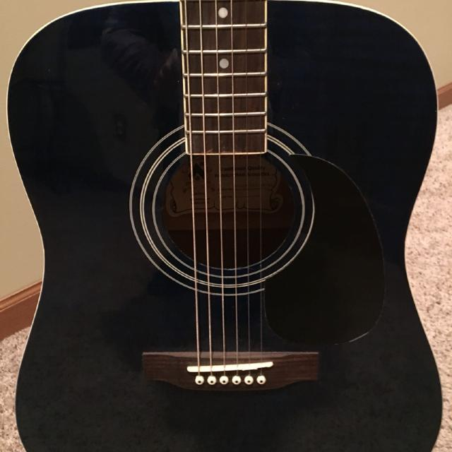 Blue Palmer Traditional Handcrafted Acoustic Guitar Model PD21F PK1 WB BL With Back