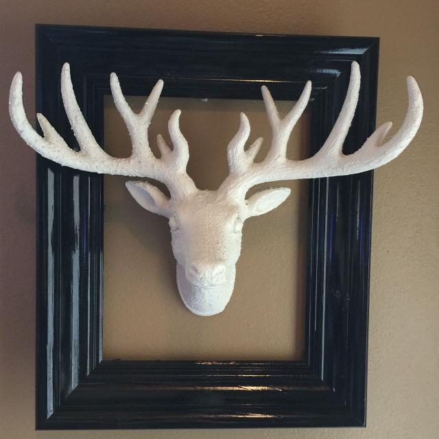 Find More Beautiful Deer Head Deer Head Is 17 X 12 Inches Frame Is