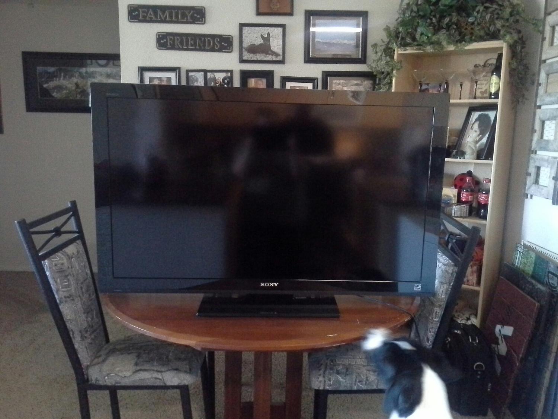 48 inch Sony Flat Screen TV