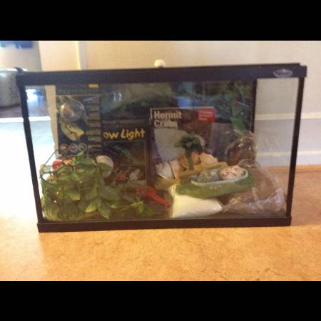 Hermit Crab Terrarium and accessories..., used for sale  Canada