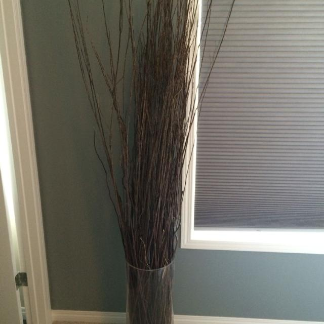 Best Tall Glass Pier One Vase With Sticks For Sale In Calgary